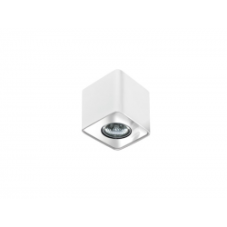 NINO 1 REFLEKTORKI POJEDYŃCZE AZZARDO FH31431S WH/CH
