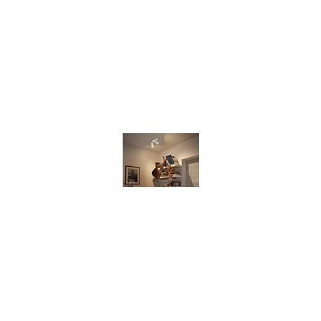 BURATTO 2L REFLEKTOR PODWÓJNY LED HUE + PRZYCIEMNIACZ 50462/31/P7 PHILIPS
